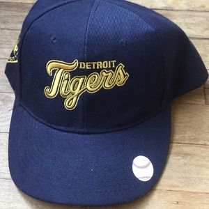 Detroit tiger hat